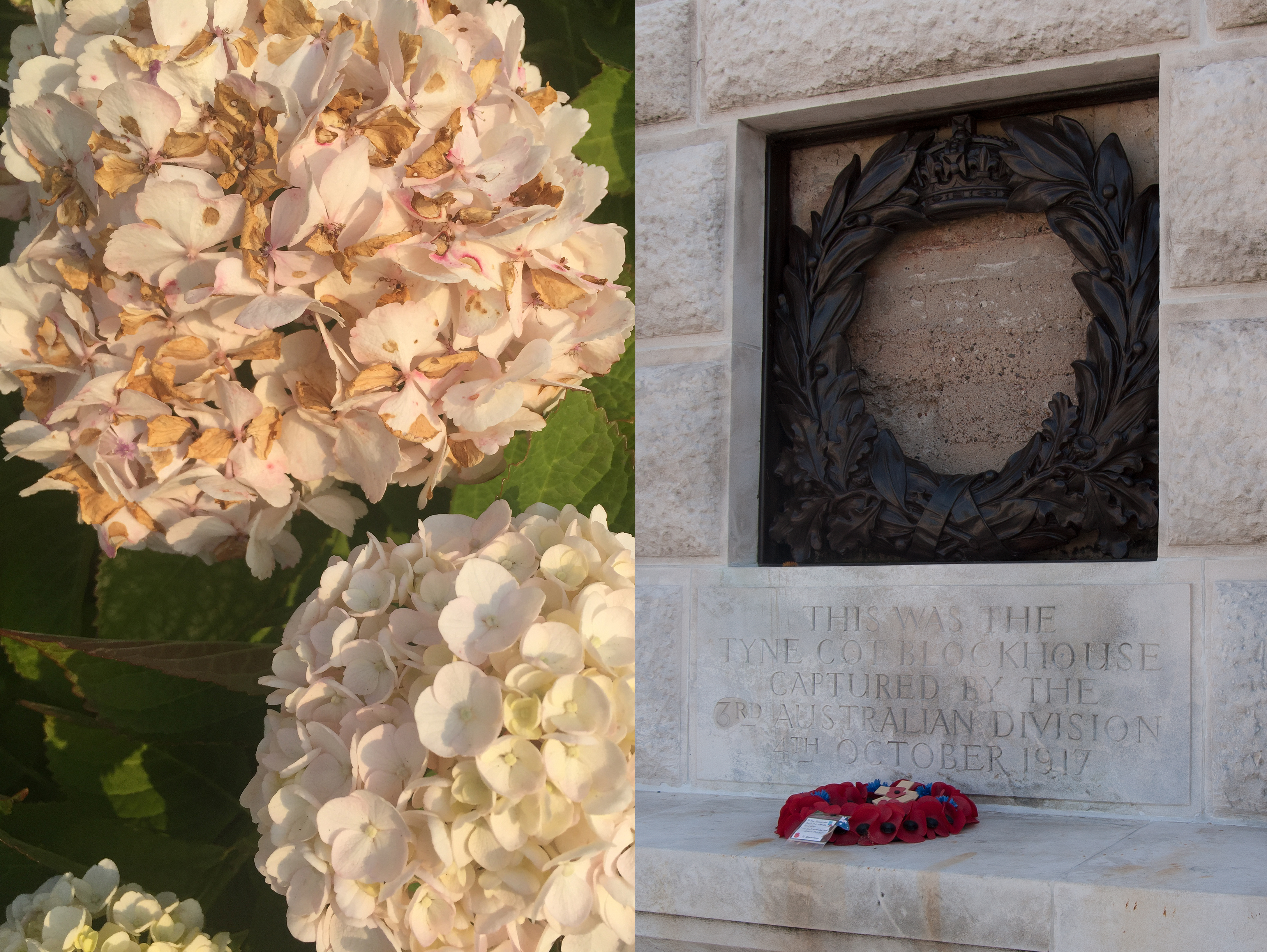 12 Searching for the Menin Gate (Flowers:Tyne Cott)